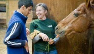 Alicia Kershaw, Williams Class of 1975, feeds a carrot to a horse while a student rider at GallopNYC looks on