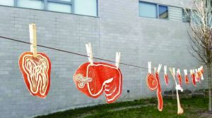 Artwork by Javier Robelo, Class of 2022, for the spring course The Body Reimagined hangs in the courtyard of the W.L.S. Spencer Studio Art Building.