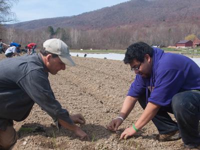 Caretaker Farm Planting