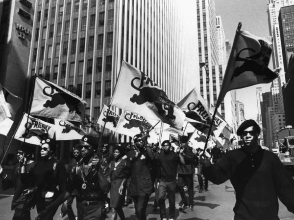 Image for Donna Murch '91: The Real Black Panthers on Throughline