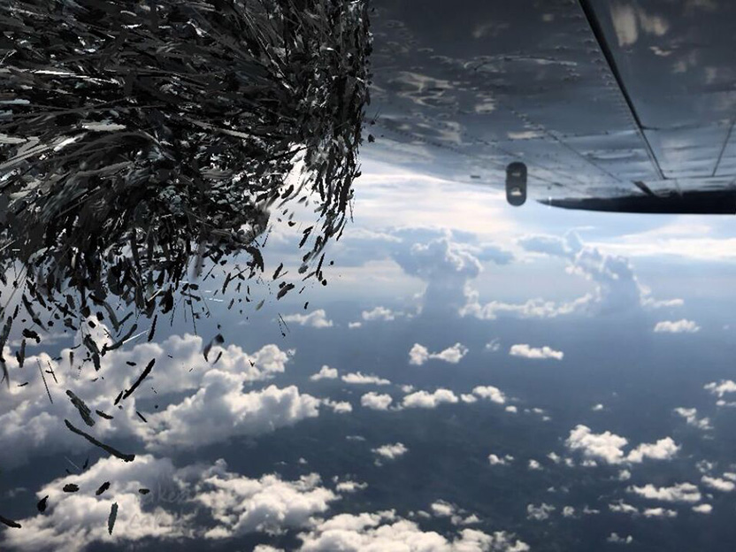 Still image from an airplane flying to Malawi, using the 4th Wall virtual reality app to project the art of Nancy Baker Cahill, Williams Class of 1992, on the image.
