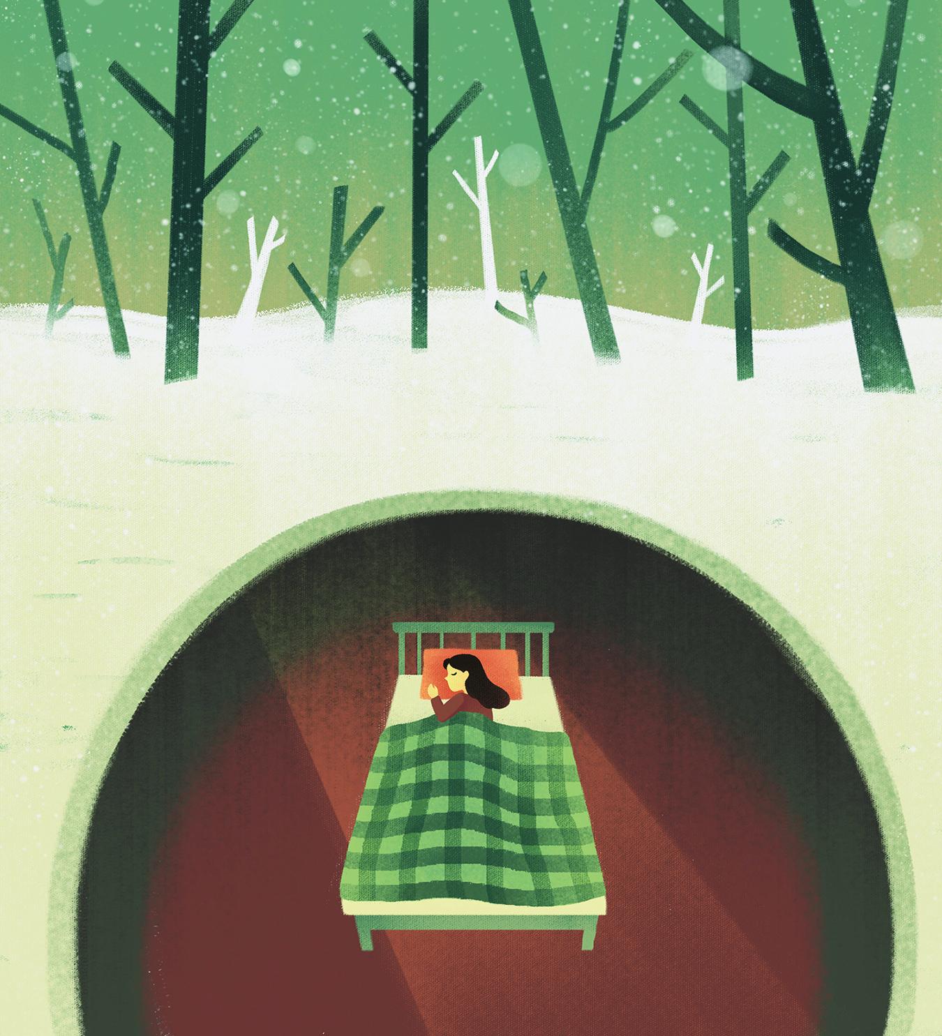 Image for The Hibernation Equation